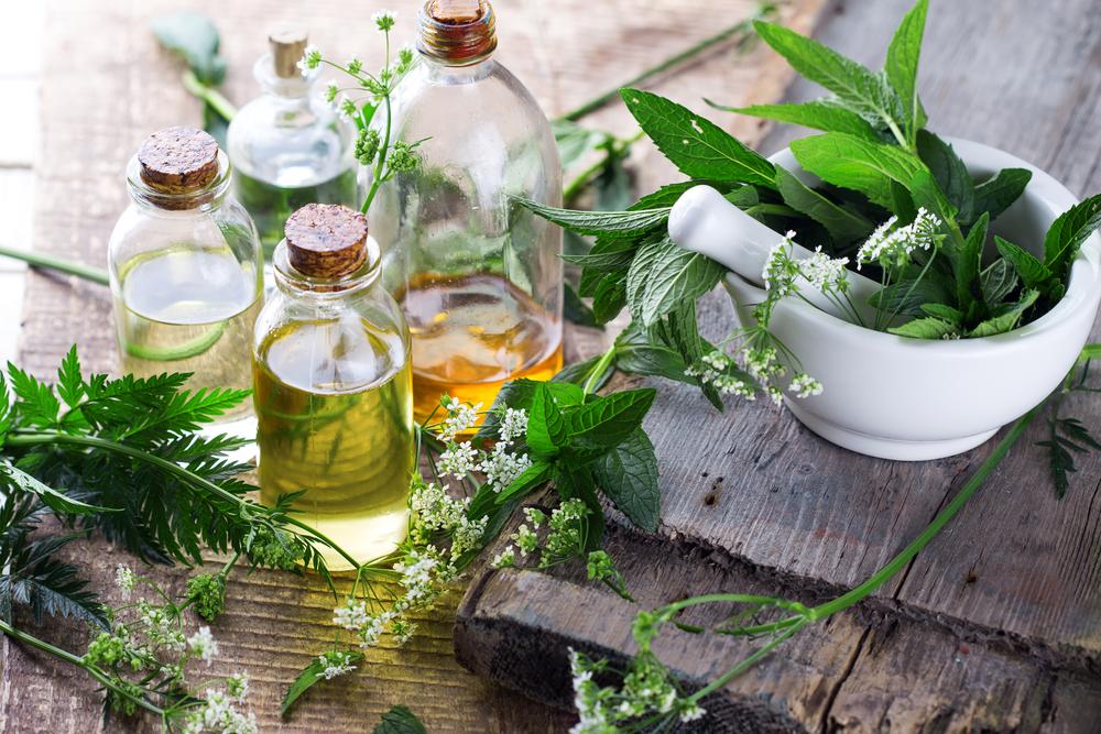 Les bienfaits de la phytothérapie