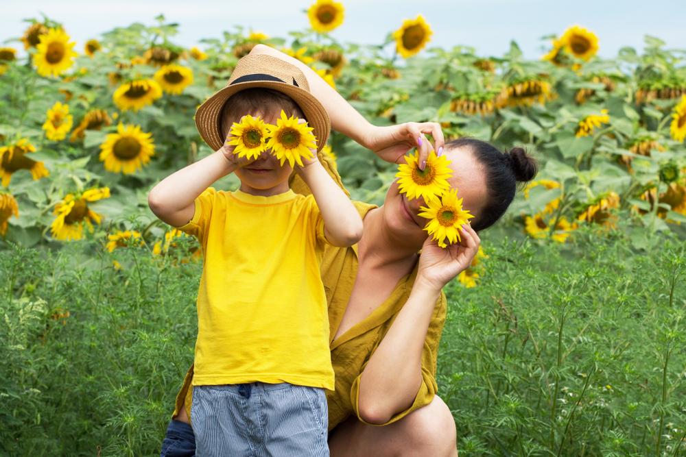 D.I.Y: Que faire de vos fleurs séchées